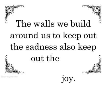 walls-keep-out-sadness-joy